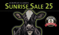 Sunrise Sale 25